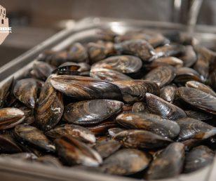 """Menù di pesce """"fresco"""" su ordinazione"""